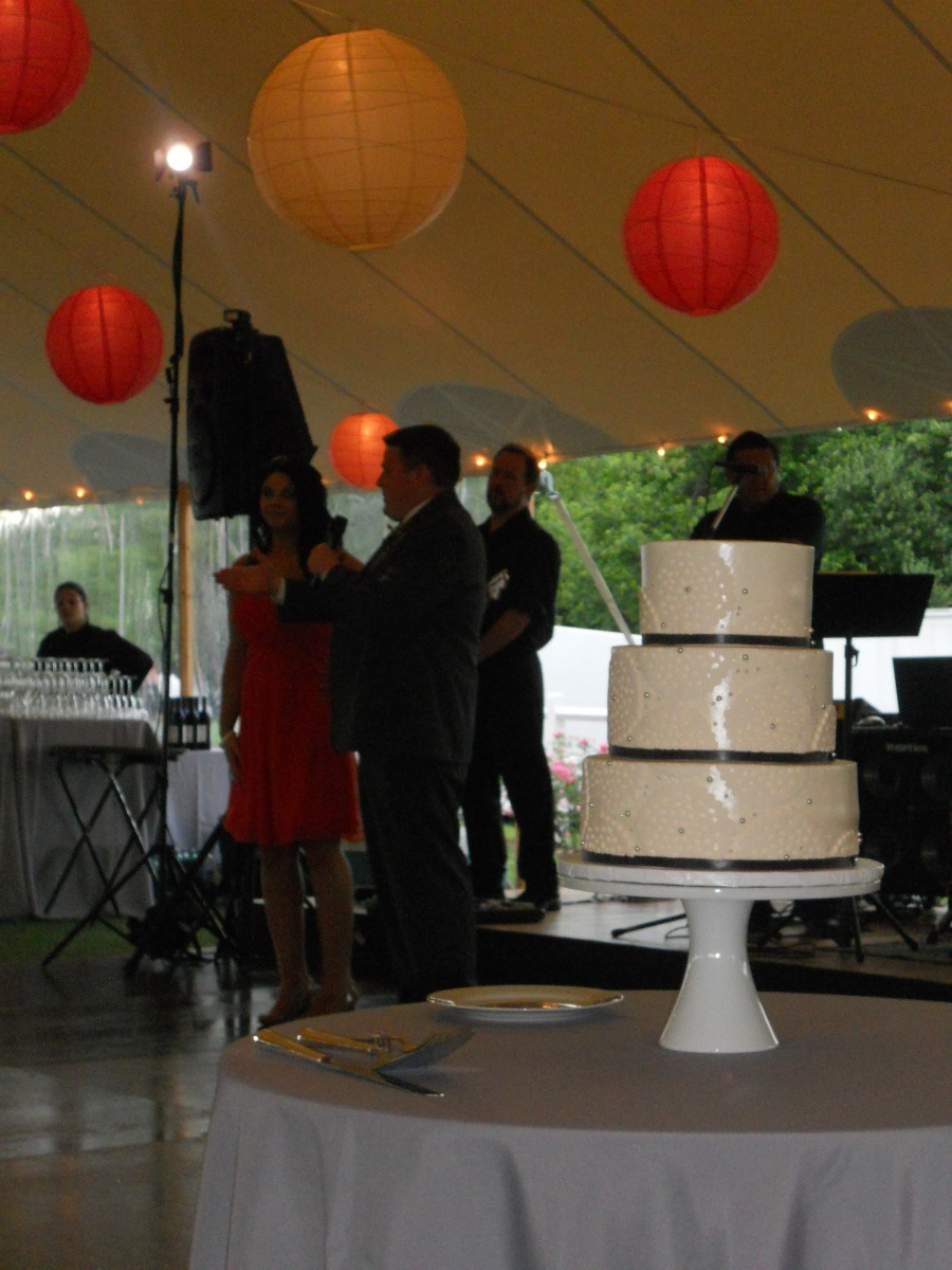 Steph & Brett's Wedding:  Best Man Speech