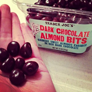 Trader Joe's Dark Chocolate Almond Bits