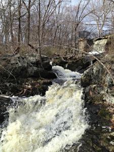 Belmont Waterfall