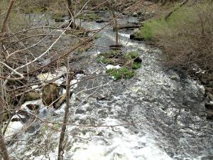 Belmont Waterfall 2