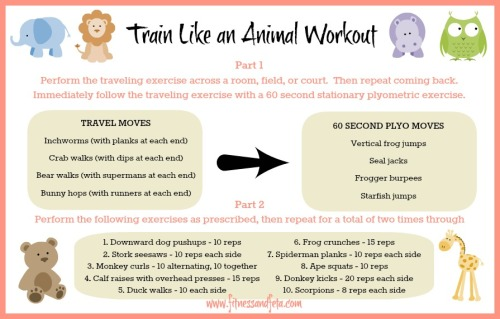 Train Like an Animal Workout
