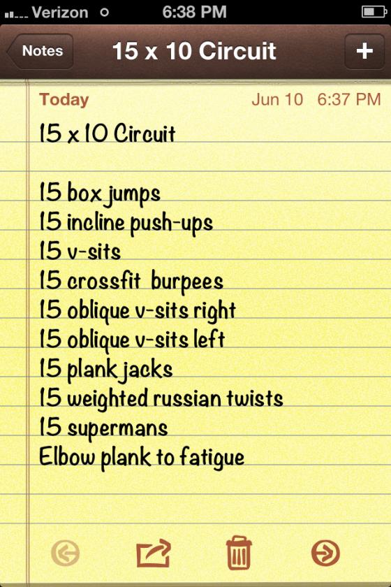 15x10 Circuit