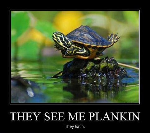 plankin
