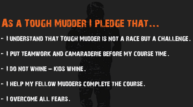 TM Pledge