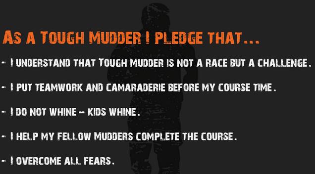TM Pledge