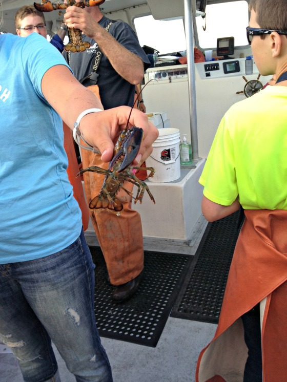 Lucky Catch Lobstering