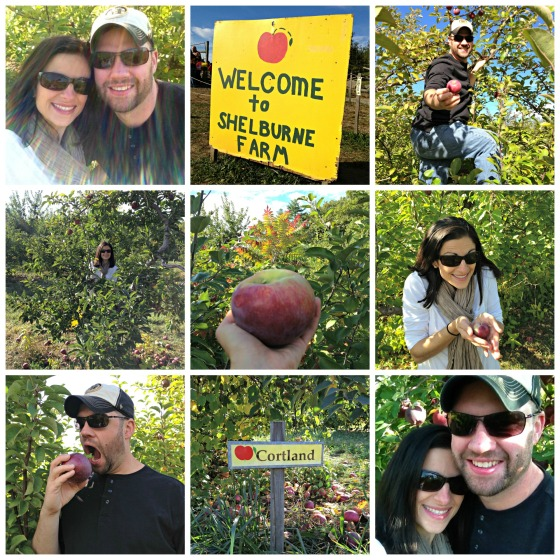 Apple Picking 2013