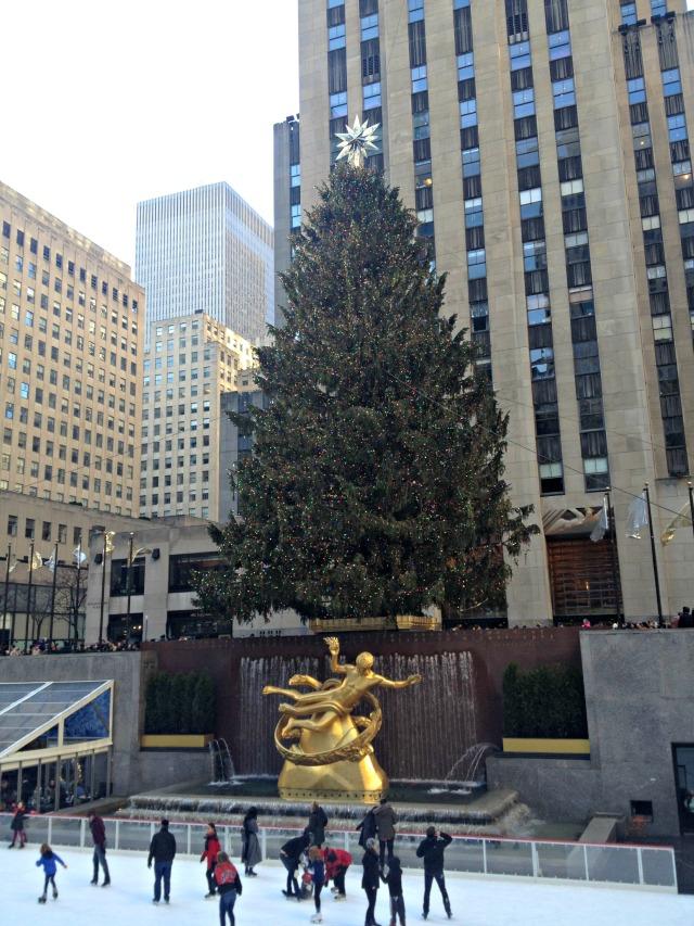 NYC 2013: Tree