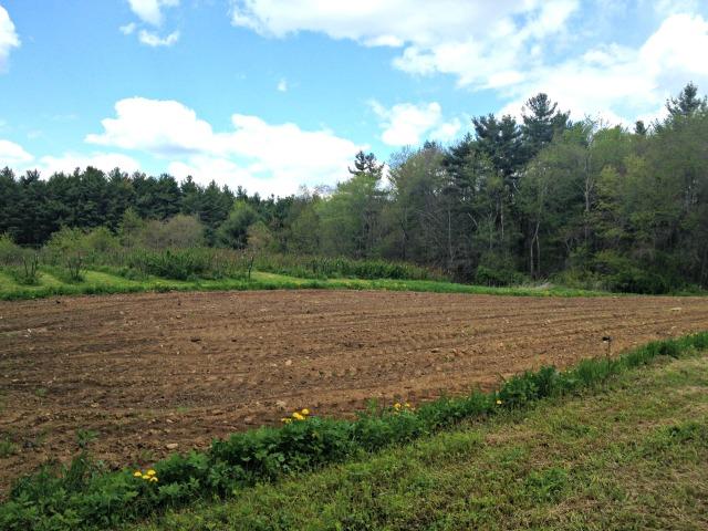 Heaven's Harvest Farm Tour