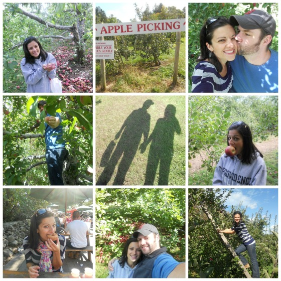 Apple Picking 2011