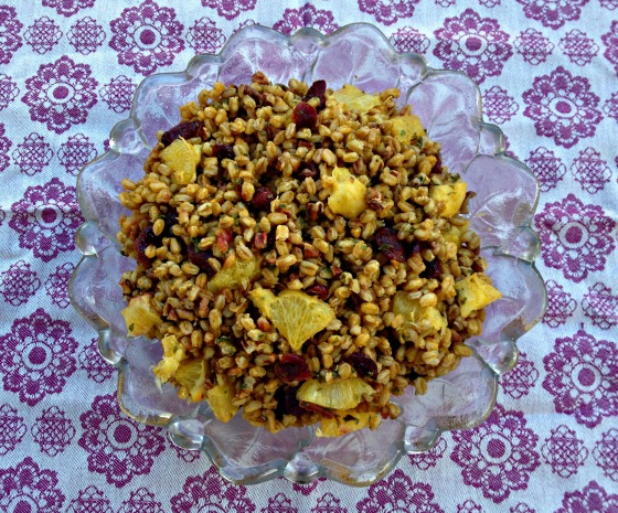 Warm Farro Salad with Orange and Cranberries